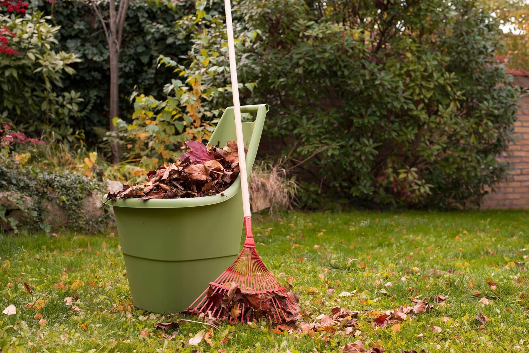 sprzątanie ogrodu