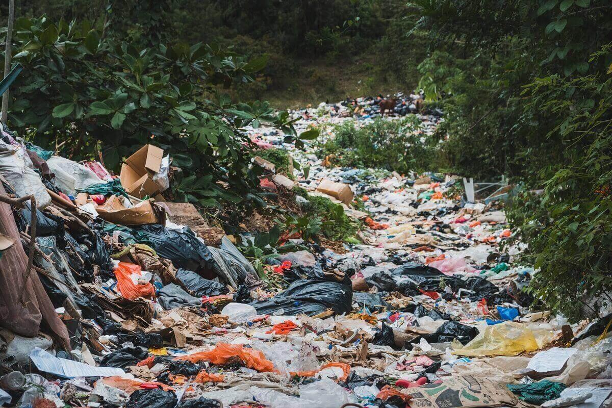 nielegalne wysypisko śmieci